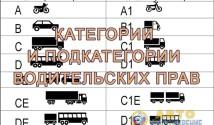 kategorii-i-podkategorii-voditelskix-prav