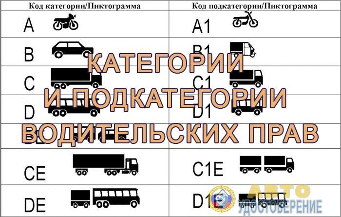 Новые категории и подкатегории водительских прав - расшифровка и классификация