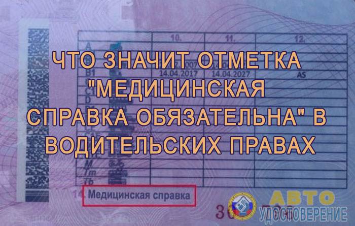 Справка для водительского удостоверения 2019 Москва Басманный